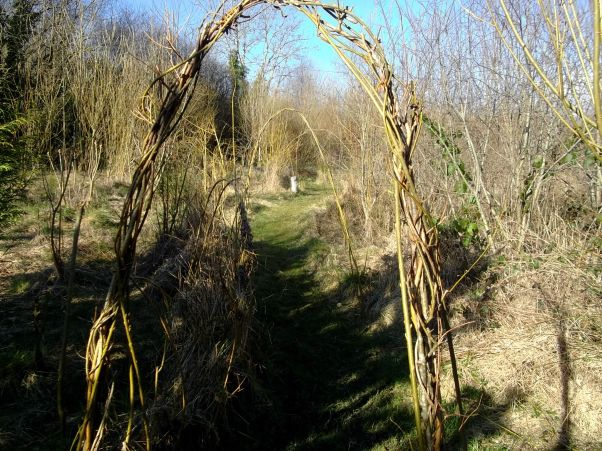 Willow archways and fedges at Bealtaine Cottage