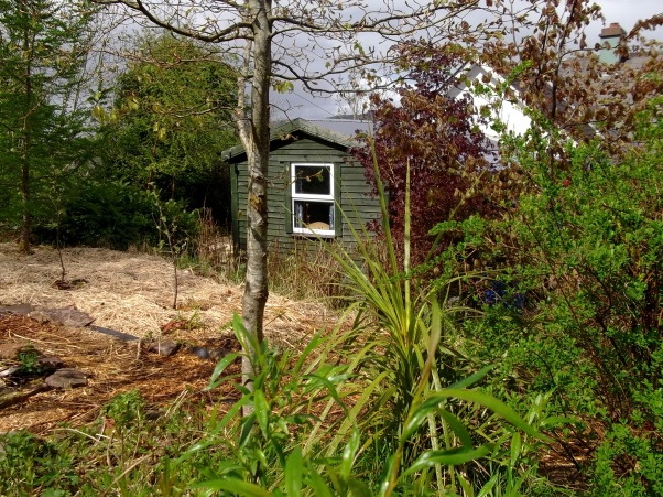 The Lodge at Bealtaine Cottage
