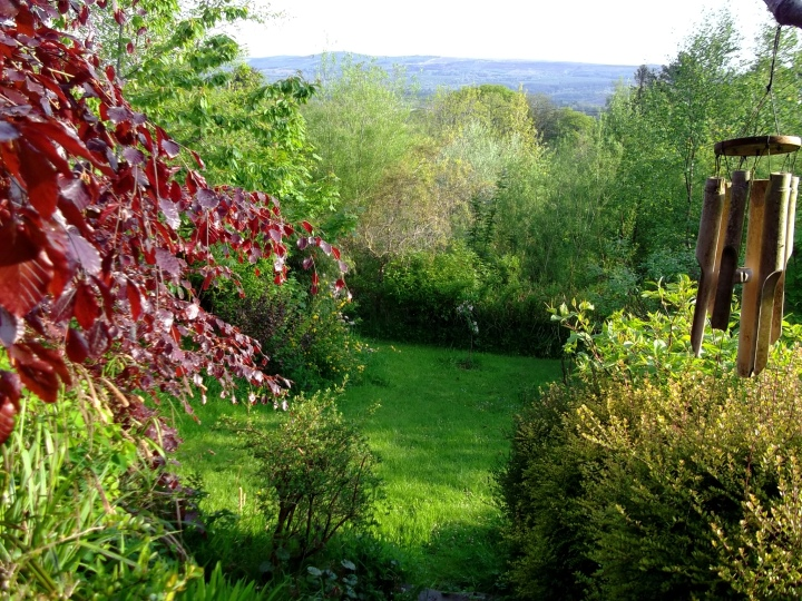 Plant Sanctuary, Bealtaine Cottage, Ireland