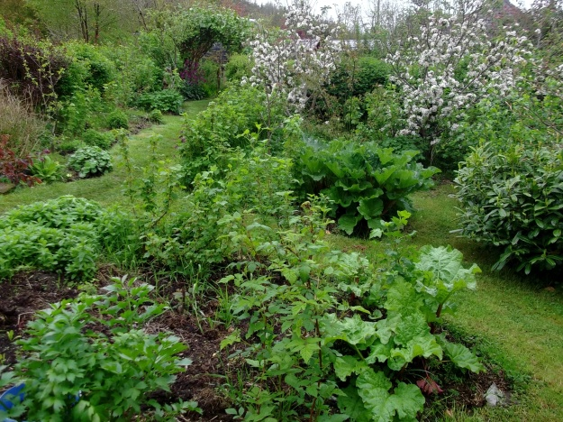 Part of the orchards and edible gardens