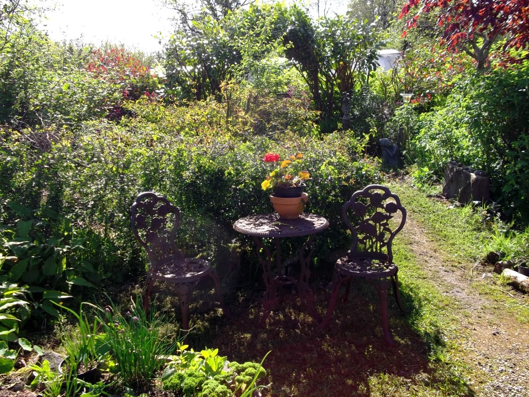 Permaculture Paradise at Bealtaine Cottage