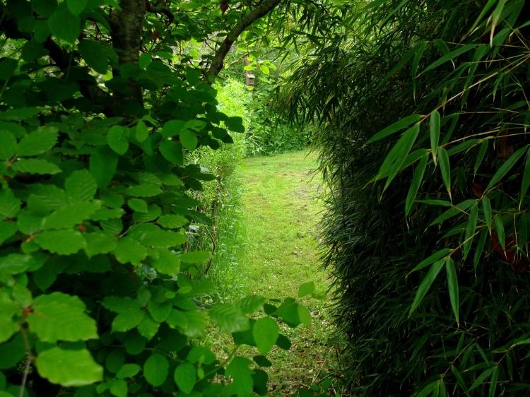 a Roscommon Garden at Bealtaine Cottage  Ireland