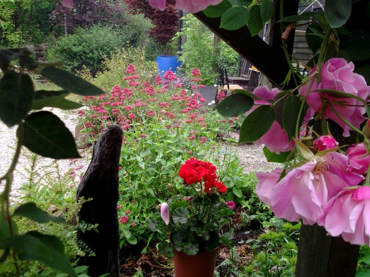 Sunday morning at Bealtaine Cottage