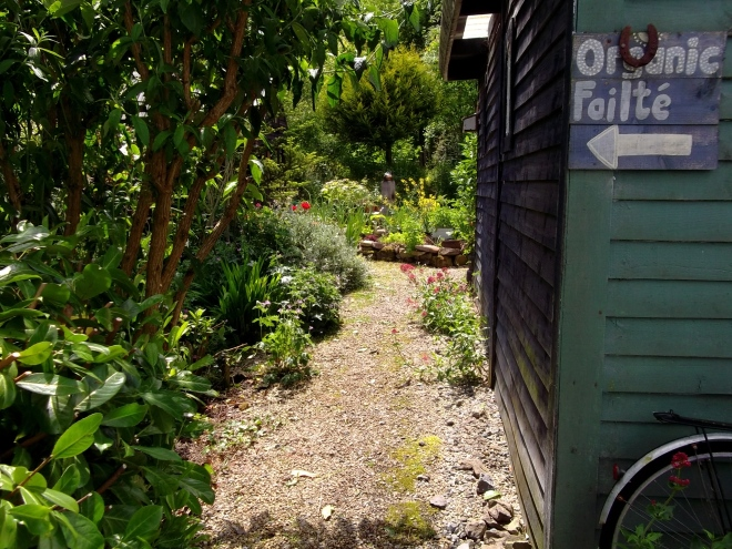By the barn at Bealtaine cottage