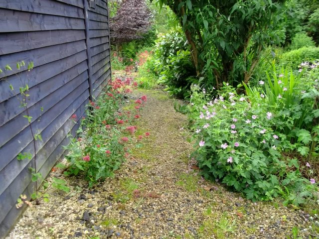 Barn, gravel, Valerian and Geranium