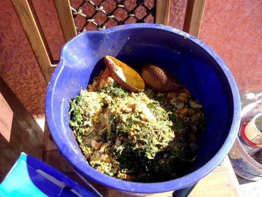 compost bucket at Bealtaine Cottage