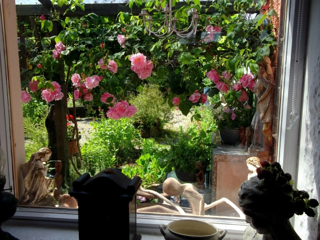 Roses on the veranda