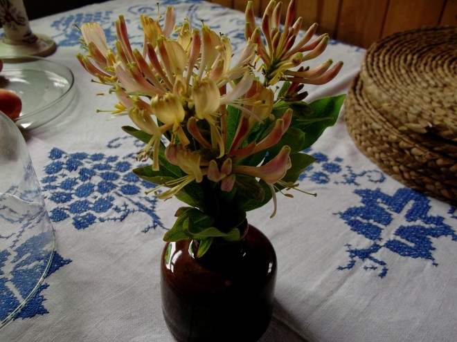 wild honeysuckle on the table at bealtaine cottage