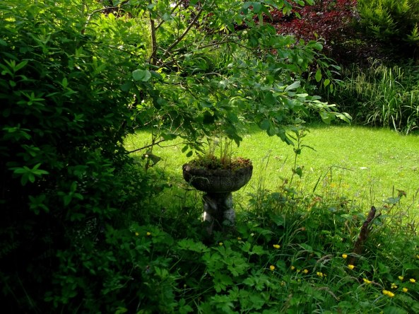 Stone planter at Bealtaine Cottage
