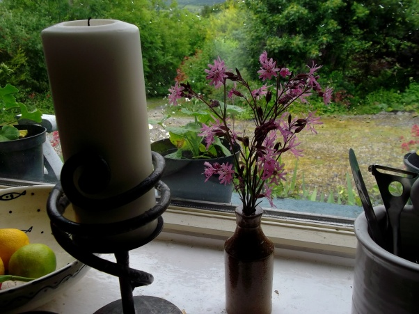 kitchen window sill at bealtaine cottage