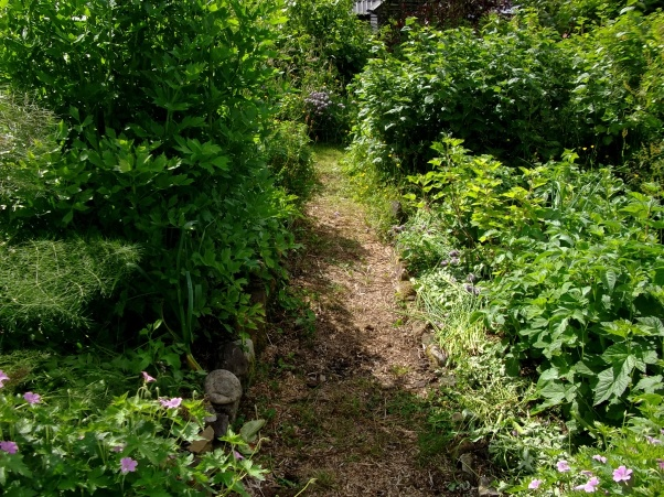 herb gardens at Bealtaine Cottage