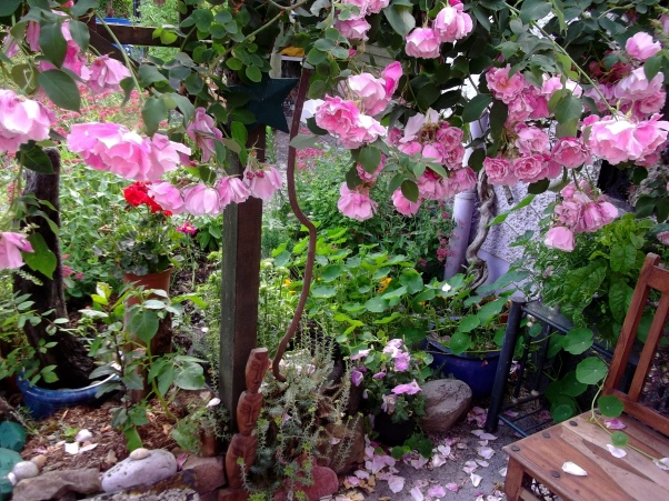 veranda at bealtaine cottage