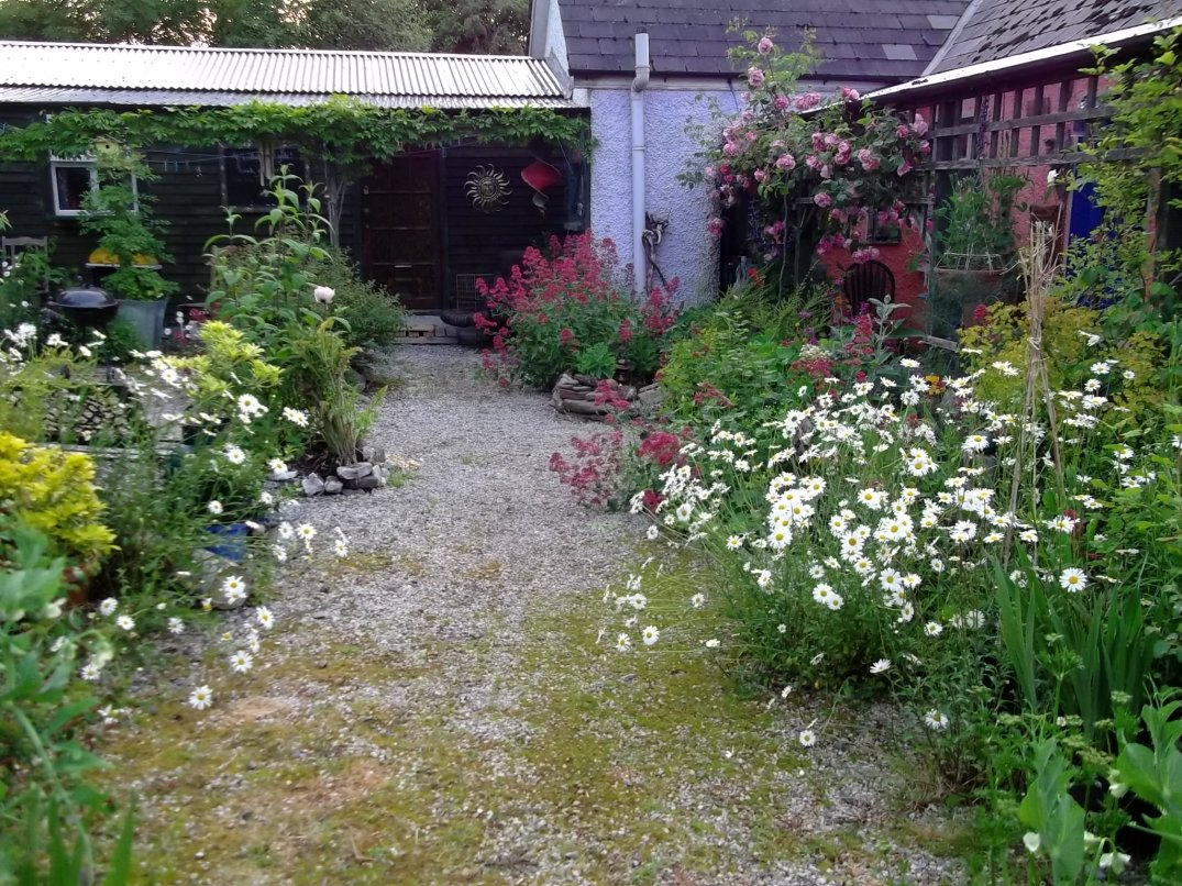 bealtaine Cottage this evening