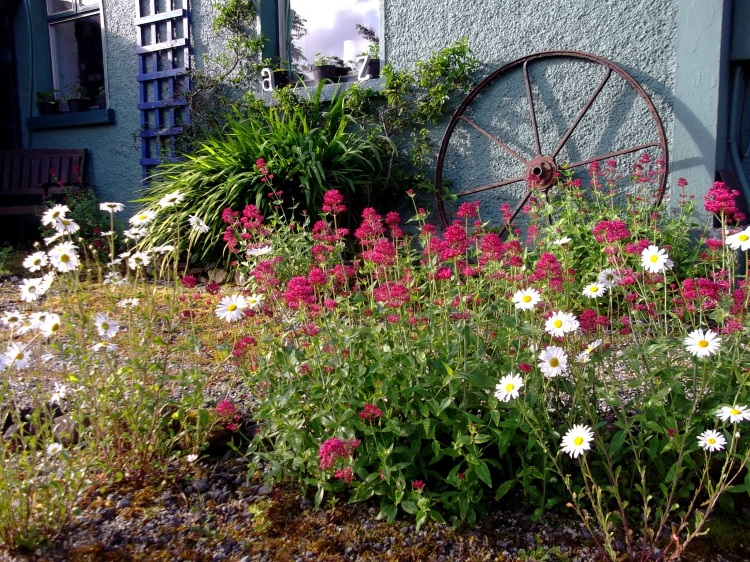 Bealtaine Cottage on Midsummer morning