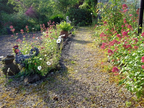 Bealtaine Cottage on Midsummer morning 2013