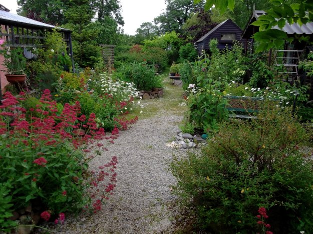 Bealtaine Cottage this morning