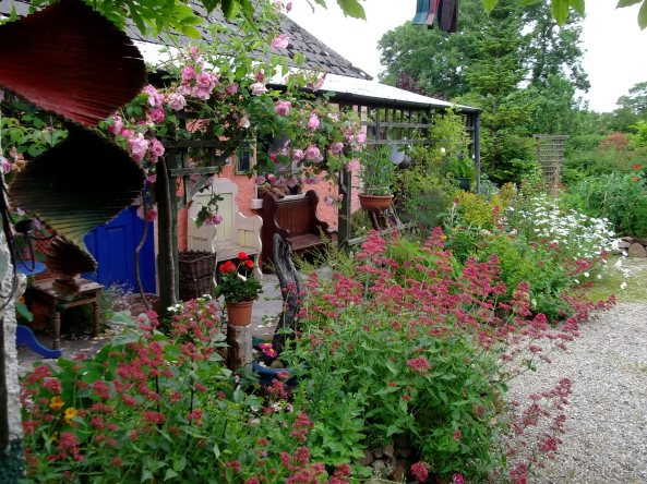 Bealtaine Cottage this morning.