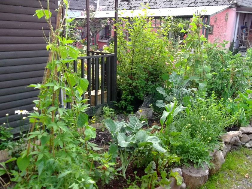 Potager beds at Bealtaine Cottage
