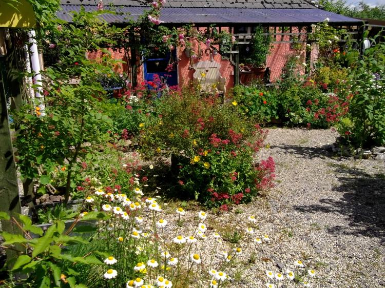 veranda at Bealtaine Cottage, July 2013