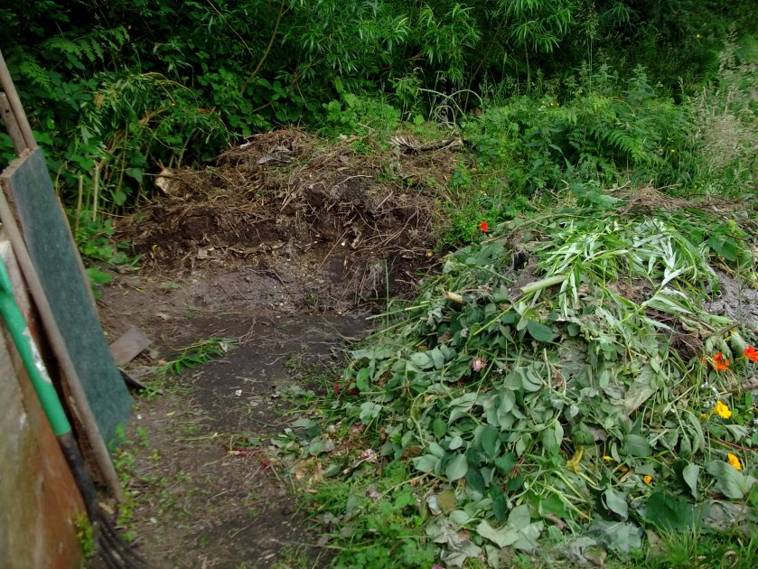 compost heaps today