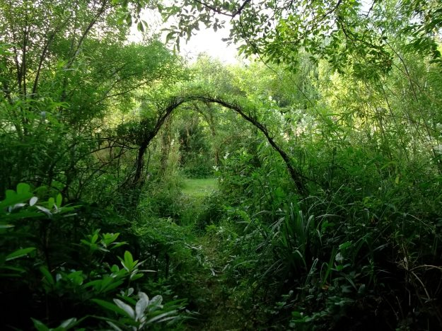 A path from the Fairy Wood