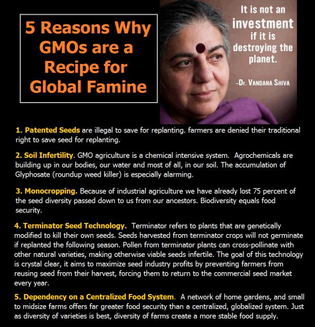Vandana Shiva on GMOs