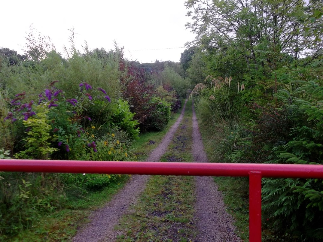 entrance to bealtaine
