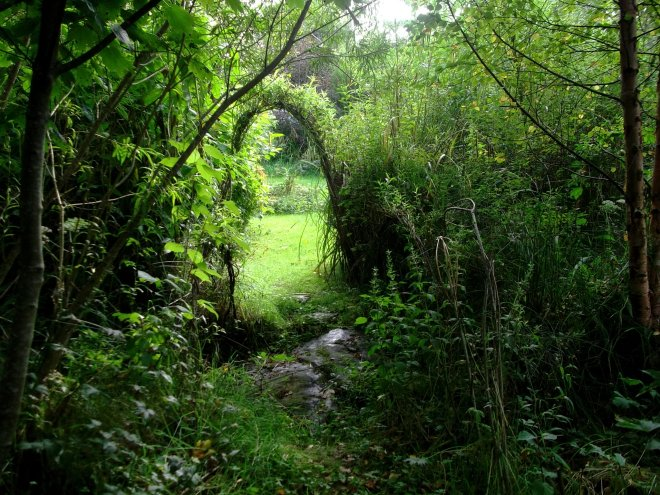 willow archway in the permaculture gardens