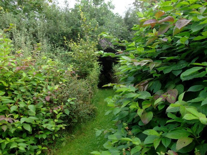 entrance to the Fairy Wood