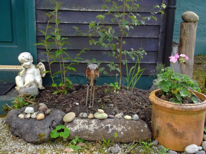 New bed by the entrance to Bealtaine Cottage