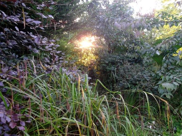 sunset at bealtaine Cottage
