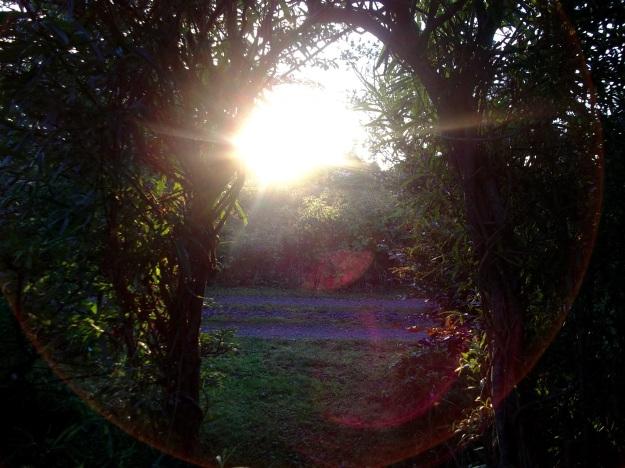 open weekend sunset