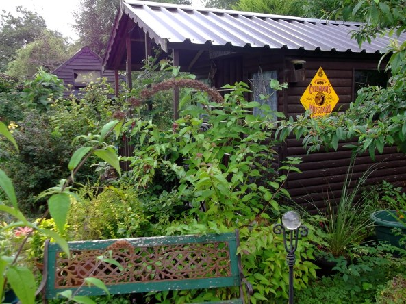 permaculture gardens