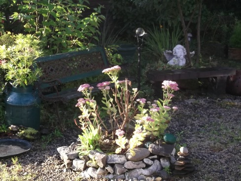 Autumn 2013 at Bealtaine Cottage 001