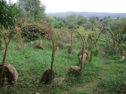 Autumn in the Permaculture Gardens of Bealtaine Cottage 017
