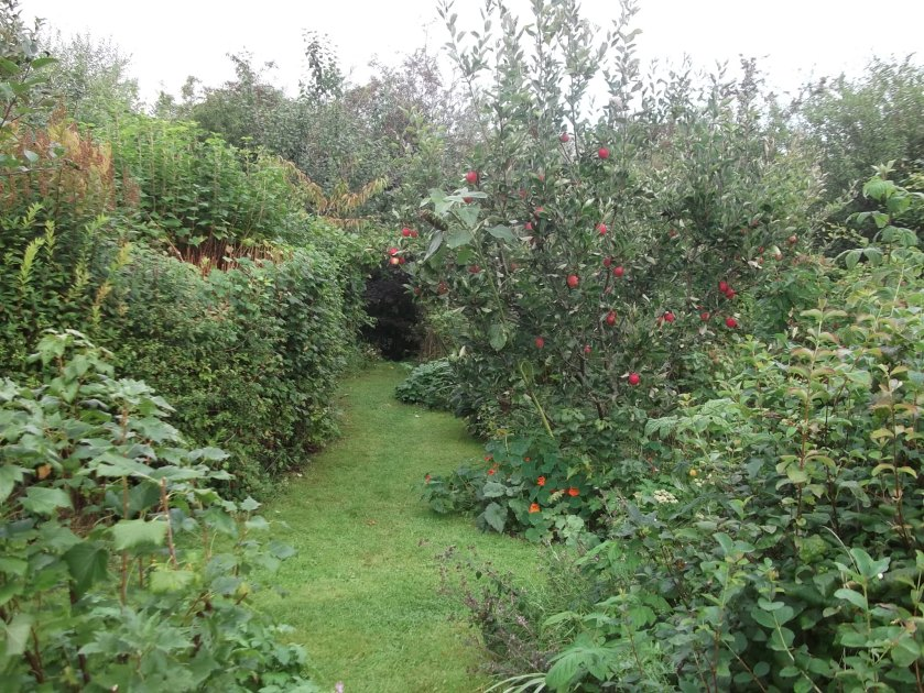 Autumn in the Permaculture Gardens of Bealtaine Cottage 028