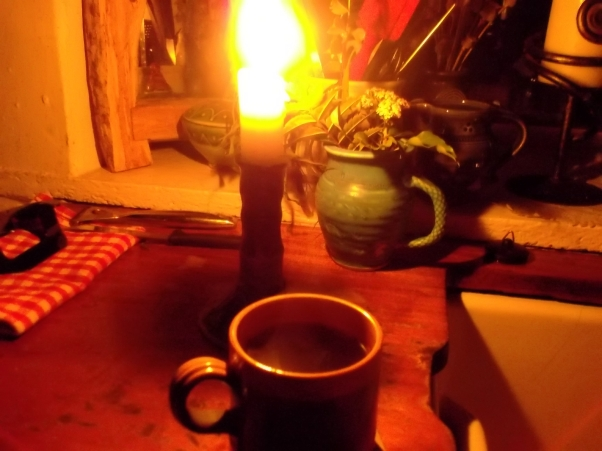 permaculture at Bealtaine Cottage 001