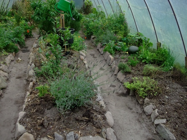 permaculture at Bealtaine Cottage 020