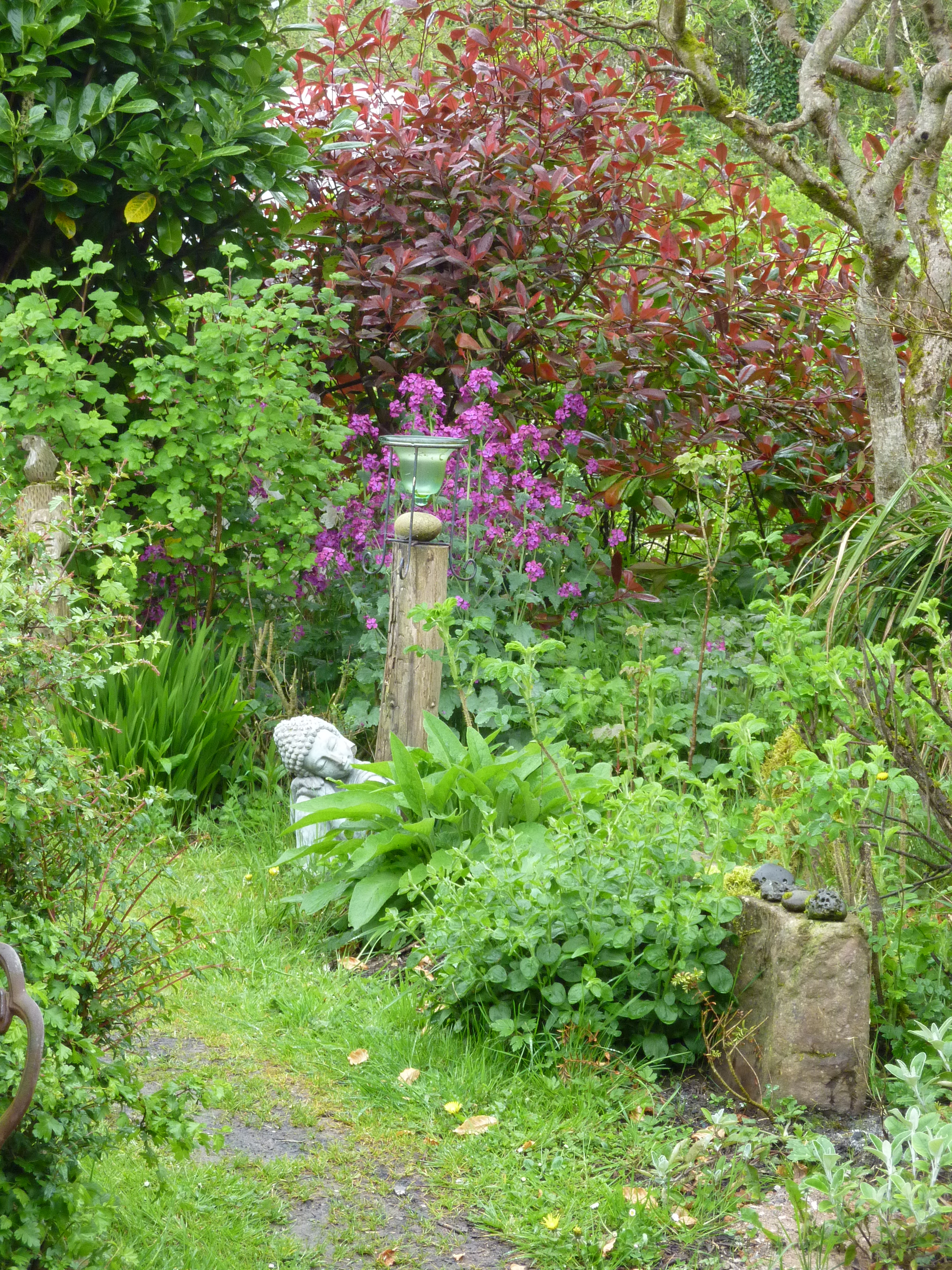 Bealtaine Eve in an Irish  Permaculture Garden.