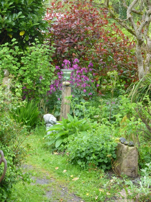 Bealtaine Eve in an Irish  Permaculture Garden.