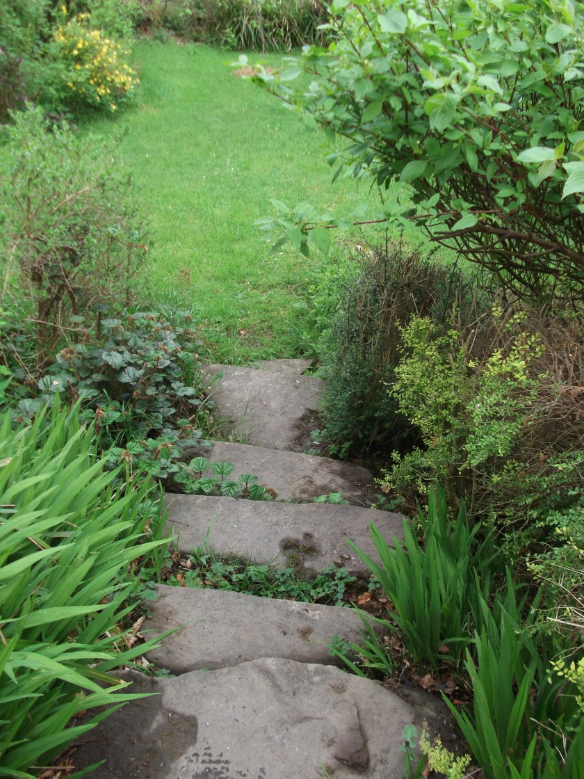 Down the steps into the may gardens