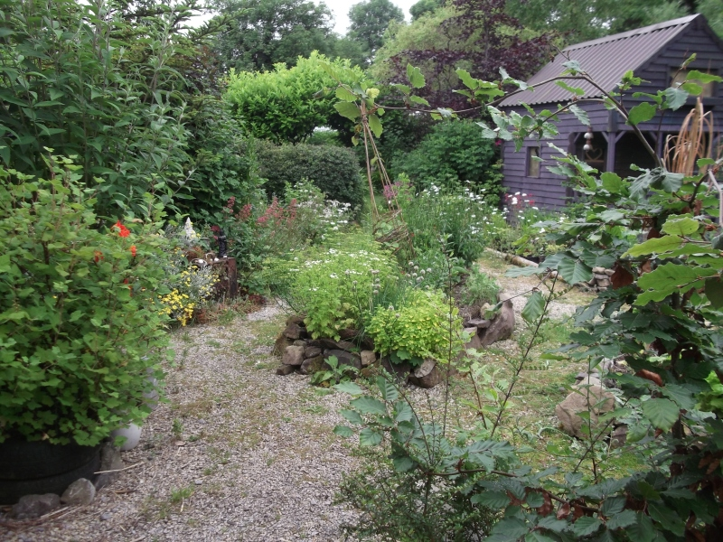 bealtainecottage.com permaculture (24)