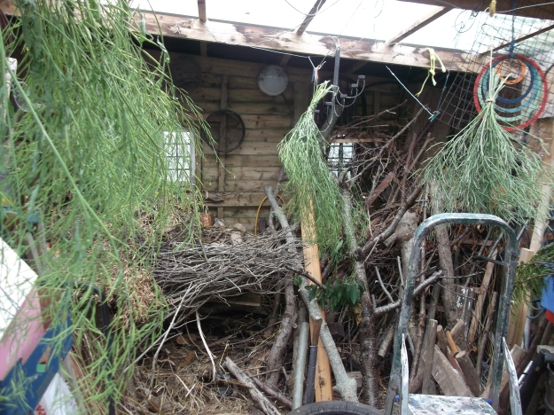 bealtainecottage.com permaculture (3)