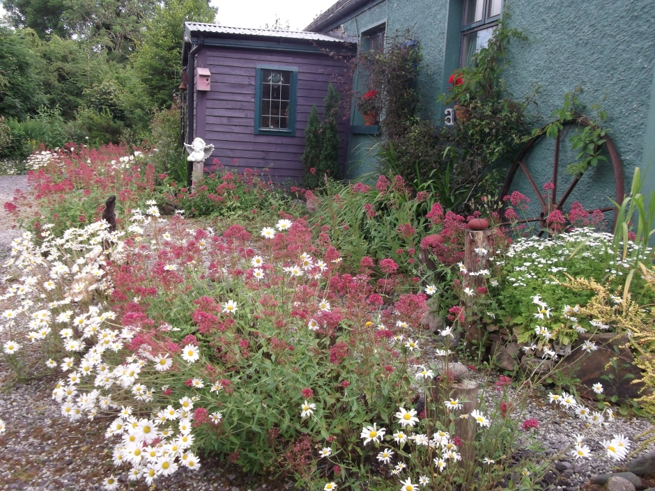 permaculture @ bealtainecottage.com (10)