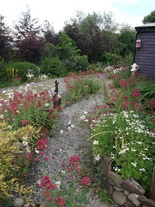 permaculture @ bealtainecottage.com (4)