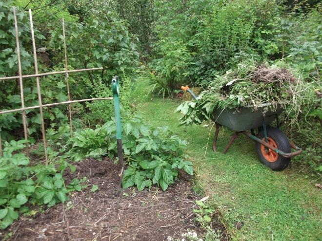 bealtainecottage.cottage.com 006