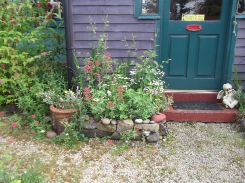 permaculture B&B Ireland 003
