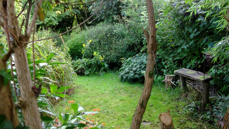 Autumn in the permaculture gardens of bealtainecottage.com 002