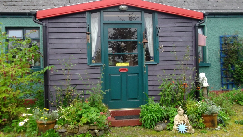 Autumn in permaculture at bealtainecottage.com 025