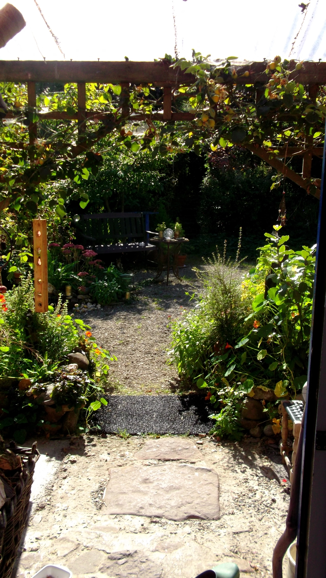 Autumn permaculture at bealtainecottage.com 020